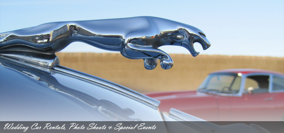 Cars With Distinction Classic Car Rentals For Weddings Photo - Cars for events